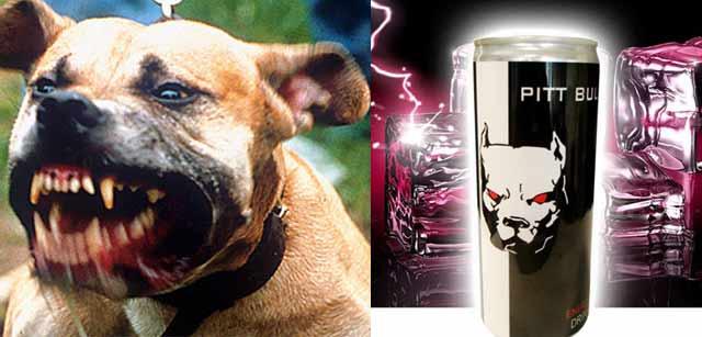 pit-bull-energydrink-640